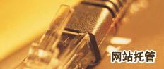 标题:网站托管添加时间:2011-01-14